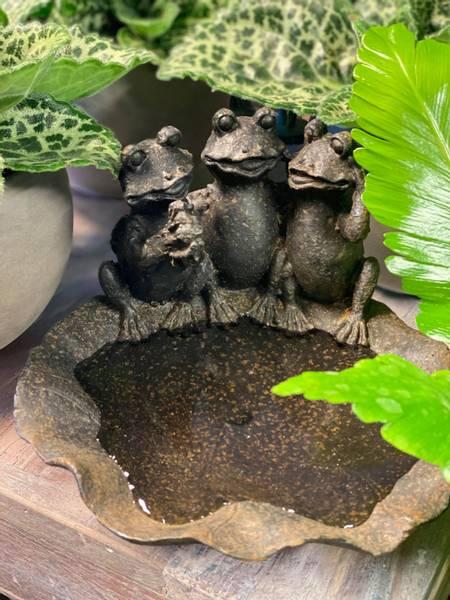Bilde av Fuglebad med frosker i